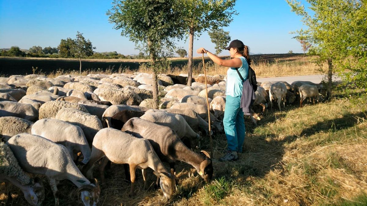 Escuela de pastores de Andalucía.