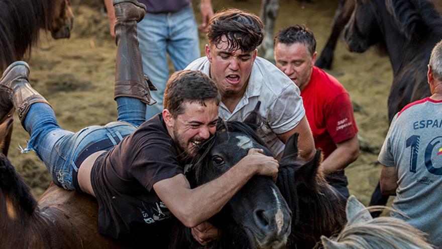 Se organizan grupos de tres personas para someter a los caballos durante las dos horas del 'curro'. Foto: El caballo de Nietzsche
