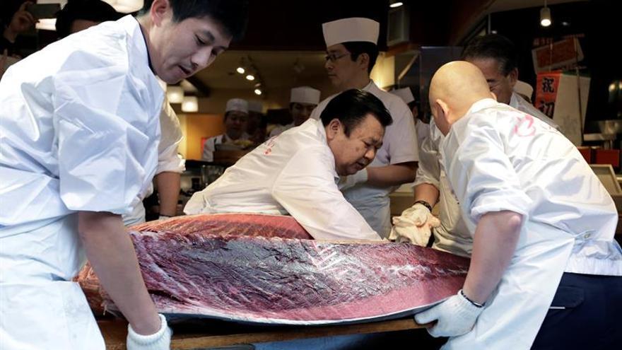 Japón limitará las capturas de atún rojo en el Pacífico ante la sobrepesca