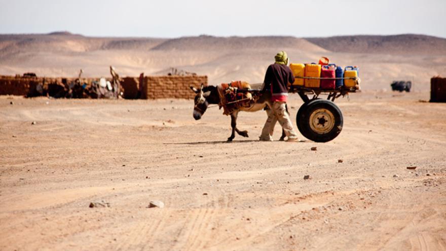Campamento de Dajla, uno de los asentamientos de refugiados saharuis cerca de Tindouf / Juan Luis Sánchez