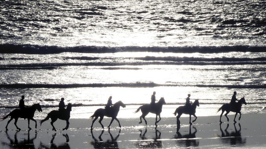 Hoy en día, el caballo bereber es un activo más en el turismo de Marruecos, un sector que florece precisamente gracias a las tradiciones y monumentos nacionales