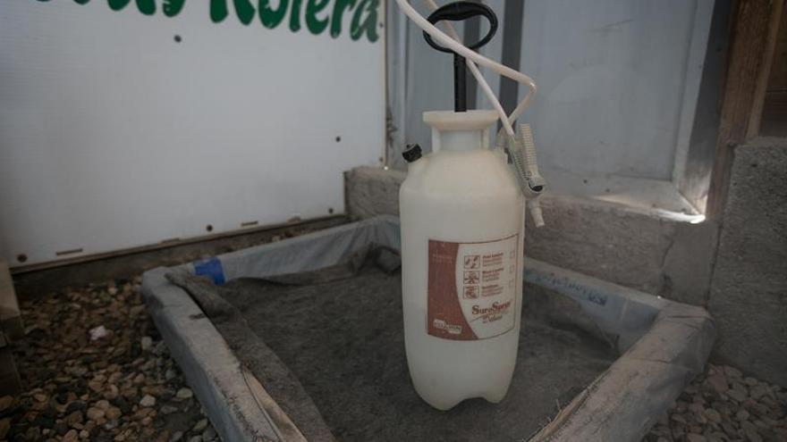 El cólera en Haití, un problema de nunca acabar
