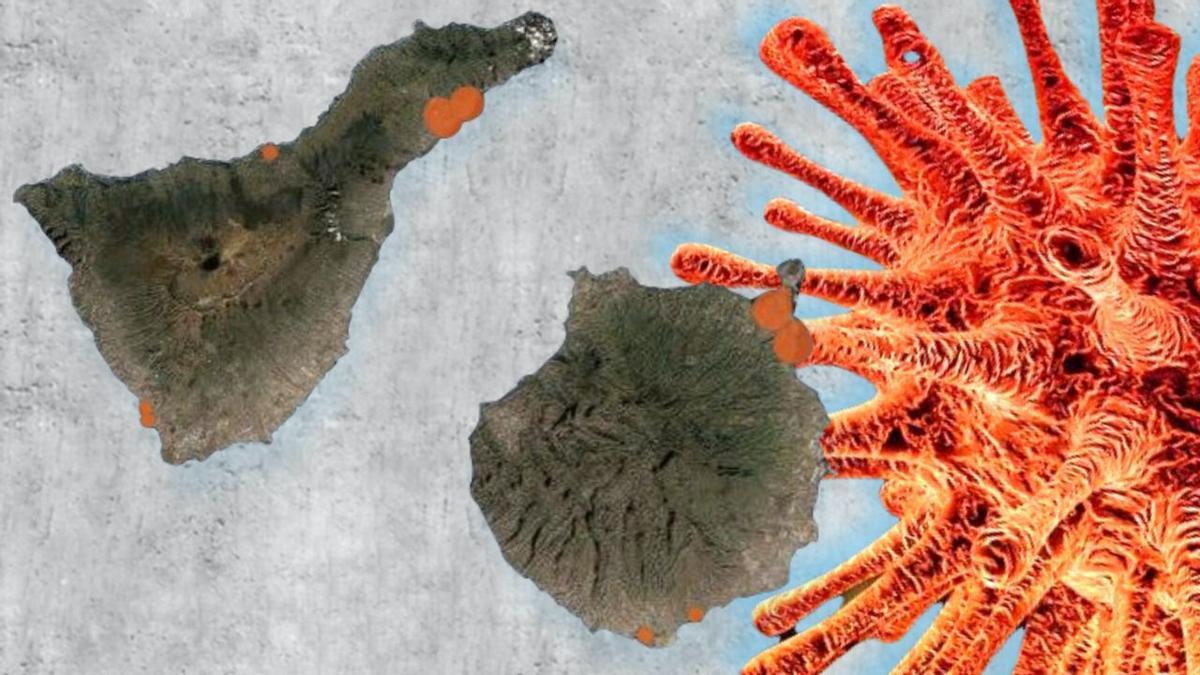 Canarias sigue registrando un estancamiento de su situación epidemiológica