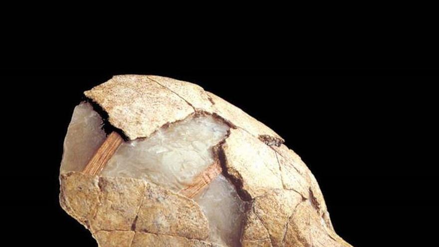 Tener ADN neandertal incrementa el riesgo de sufrir hasta 12 enfermedades