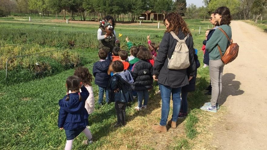 Convocadas ayudas a centros docentes para visitas de educación ambiental
