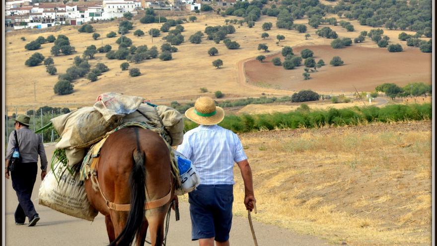 Desarrollo mundo rural
