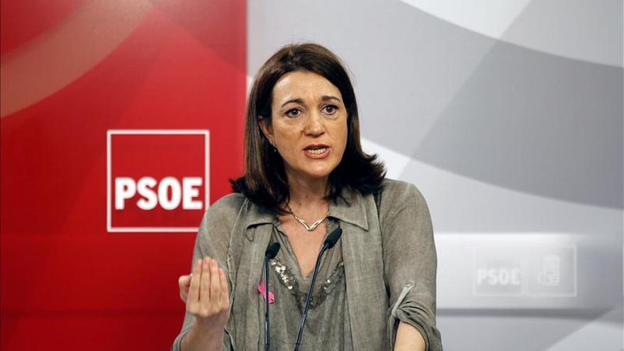 El PSOE planteará en el Congreso la reprobación y dimisión de Wert