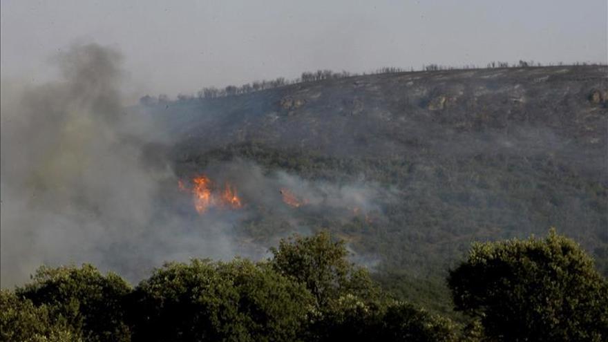 Estabilizado el incendio forestal de Humanes (Guadalajara)