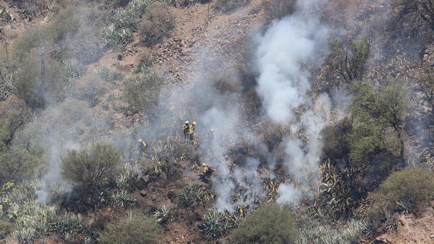 Operarios trabajan en el incendio de la cumbre de Gran Canaria.