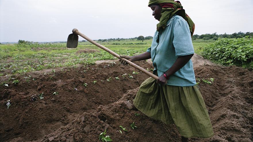 Una mujer trabaja la tierra en Tanzania, país con más de un 20% de subnutrición entre su población. /