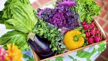 Alimentación basada en la Dieta Mediterránea y actividad física, los mejores aliados para recuperarnos del confinamiento