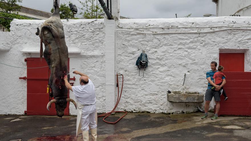 Un adulto con un niño en brazos observa cómo el toro es desangrado tras la lidia. Foto: Askekintza/Tras Los Muros