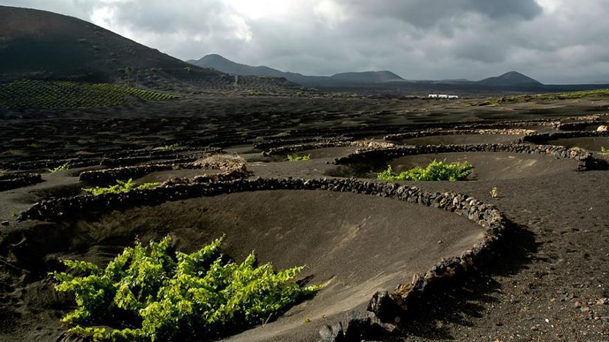 Construcción circular típico del paisaje Protegido de La Geria