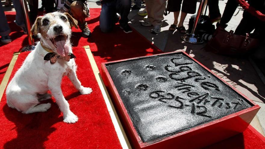 Uggie, el perro de The Artist