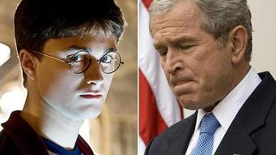 Harry Potter y Bush