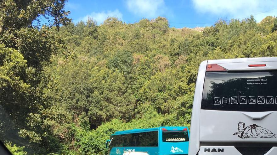 Guaguas transitando por la estrecha carretera de Anaga