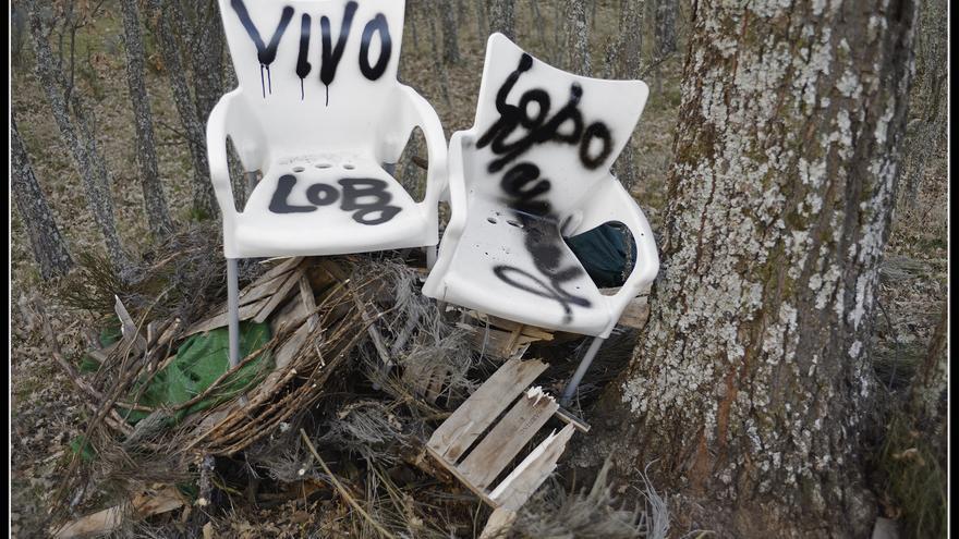 Lobo Marley dejó su mensaje en las sillas del cazador y del guarda del coto, que le prepara el cebadero para la caza ilegal del lobo en Sierra de la Culebra (Zamora)