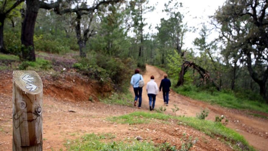 Sierra de Aracena.