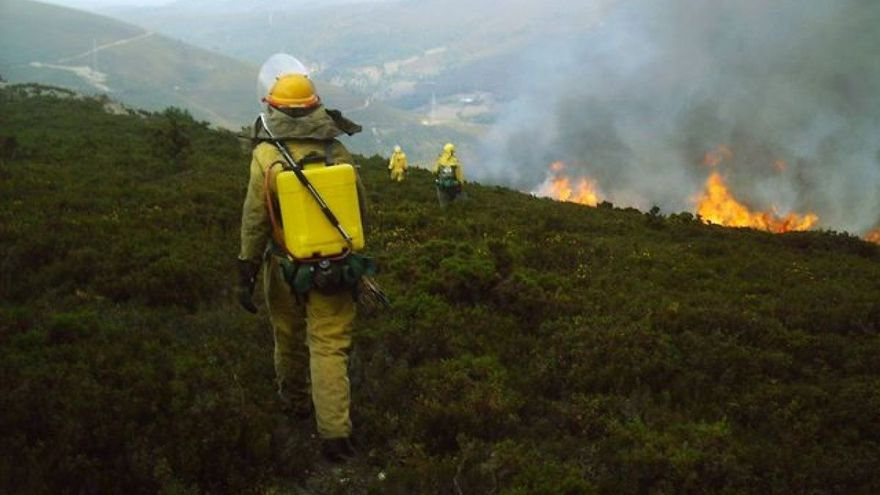 Brigadistas trabajando en la extinción de un incendio