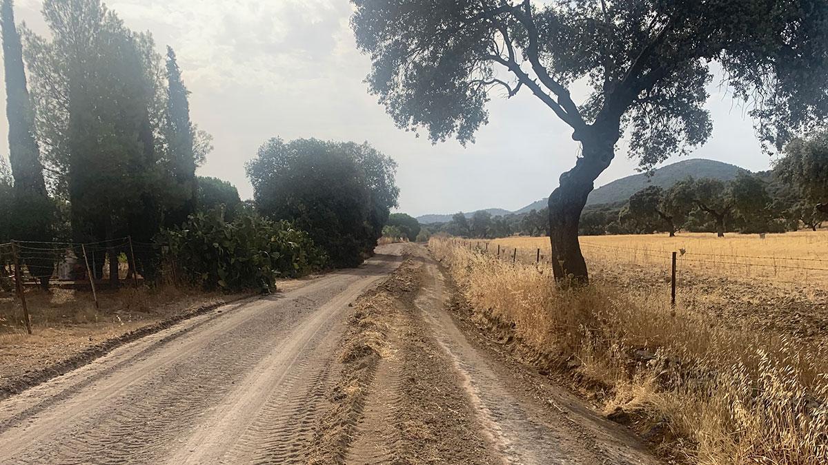 Camino rural de San Bernardino