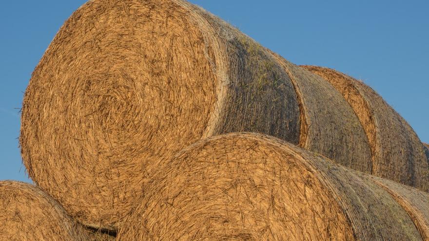 Paja recogida y almacenada en el campo, en una zona de la Península