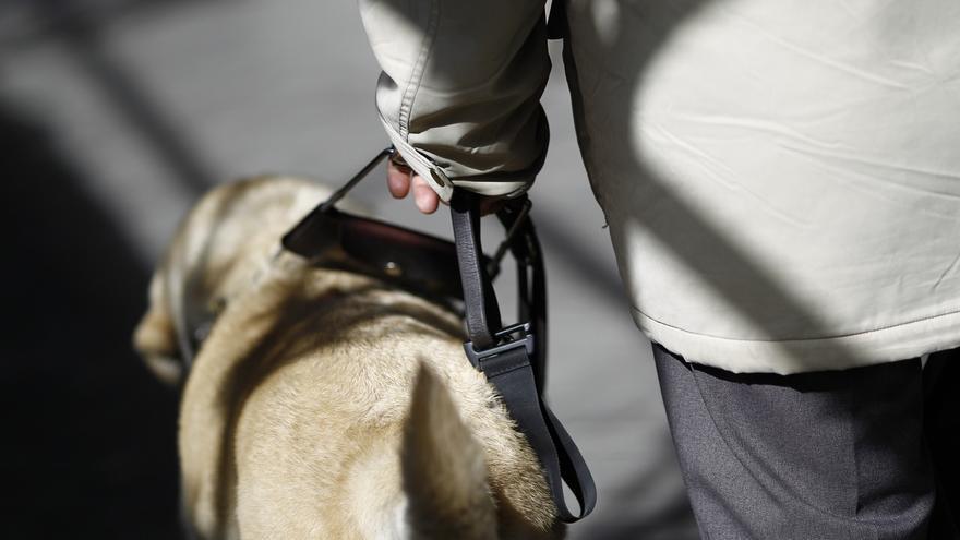 La ley promoverá la utilización de perros de asistencia por parte de las personas con discapacidad