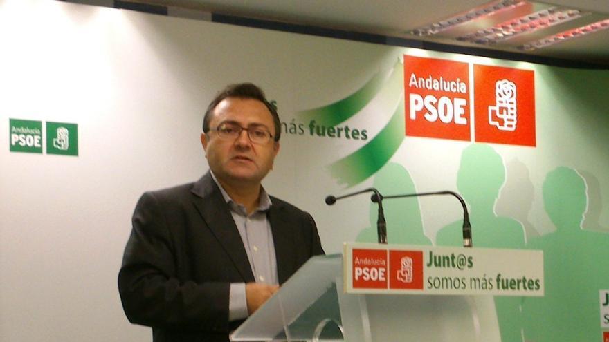 """PSOE-A afirma que está """"atando todos los flecos"""" de la ley de transexualidad para que el Gobierno central no la recurra"""
