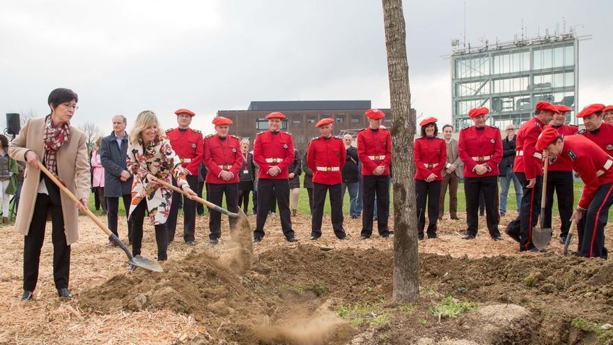 Plantan un descendiente del Árbol de Gernika en la sede central de la Ertzaintza en Erandio