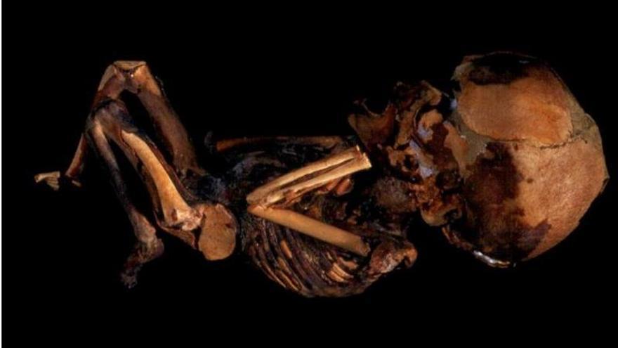Feto guanche momificado de 5-6 meses, expuesto en el Museo de Naturaleza y Arqueología, en Santa Cruz de Tenerife