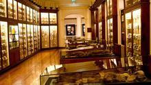 Así está El Museo Canario que fundó el doctor Chil y Naranjo