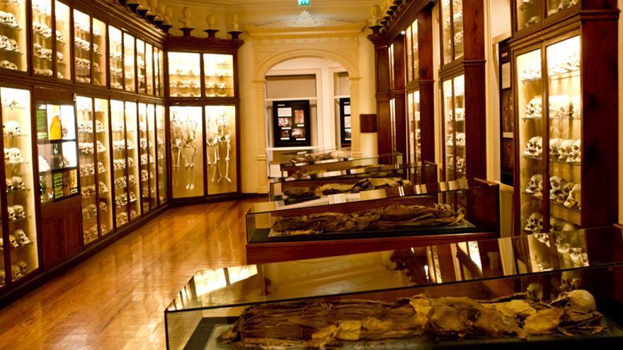 Sala de Antropología Física del Museo Canario de Las Palmas de Gran Canaria.