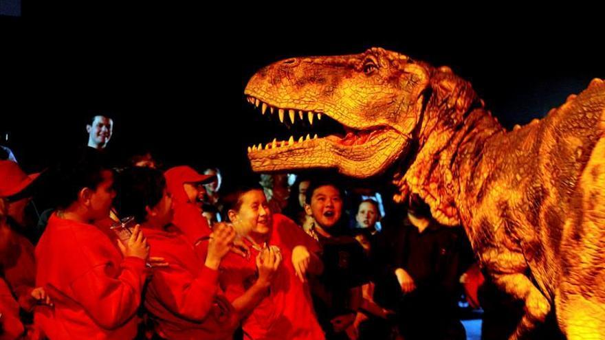 Una misión recoge una tonelada de huesos de dinosaurios y fósiles de la Antártida