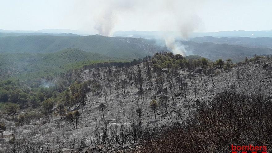 Imagen de Bombers de la Generalitat del incendio en la Ribera d'Ebre