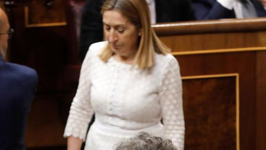 La portavoz de Coalición Canaria, Ana Oramas, junto al portavoz parlamentario de ERC, Joan Tardá, en el Congreso de los Diputados