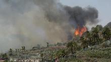 Las lecciones del incendio que arrasó Garajonay (La Gomera).
