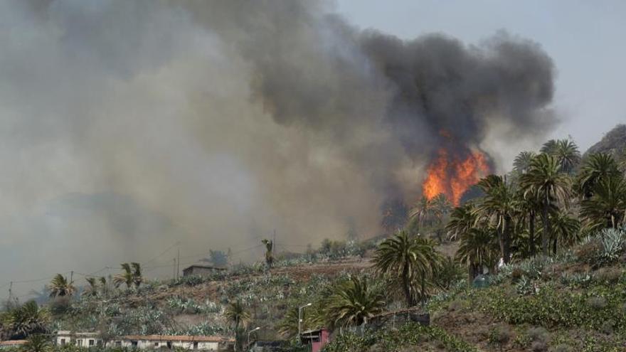 Las lecciones del incendio que arrasó Garajonay (La Gomera)