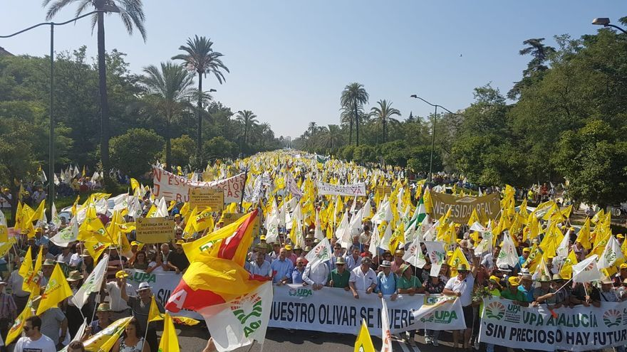 Manifestación en defensa del olivar tradicional del 9 de julio.