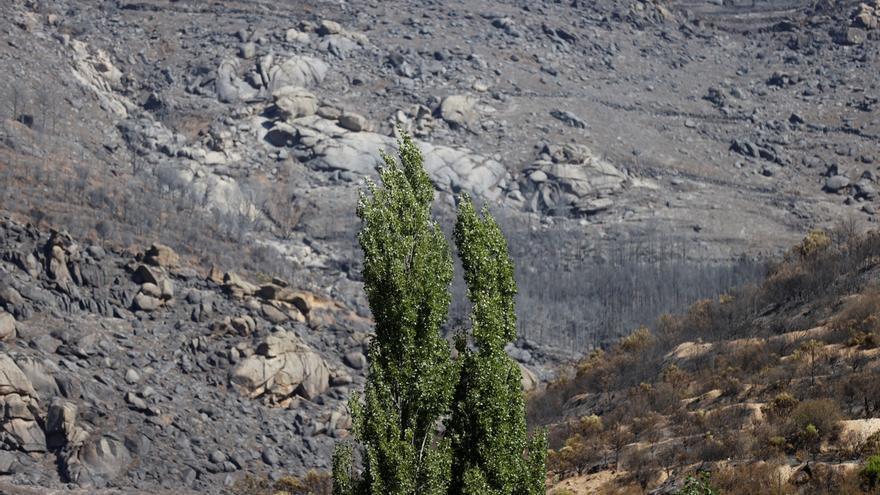 Casado se une a la petición para declarar zona catastrófica el fuego en Ávila