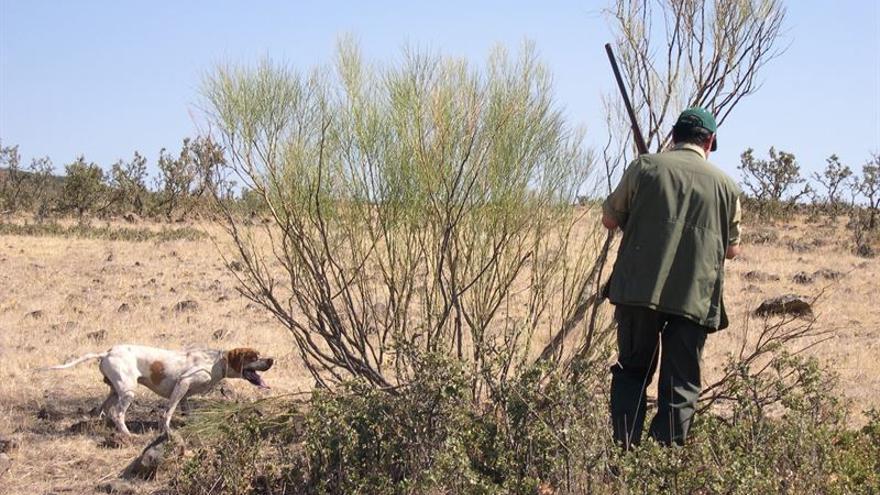 Manifestaciones en nueve ciudades españolas contra la caza con perros.