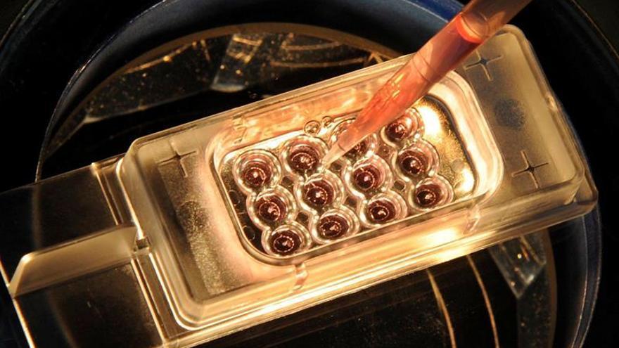 Proponen una prueba genética para los pacientes de cáncer en el Reino Unido