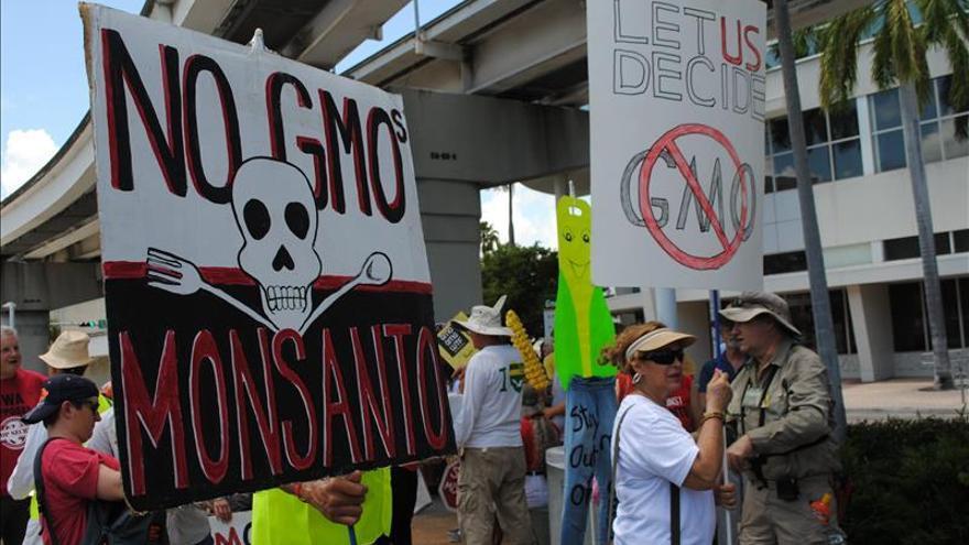 Protestan en Miami para que se etiqueten los  alimentos genéticamente modificados