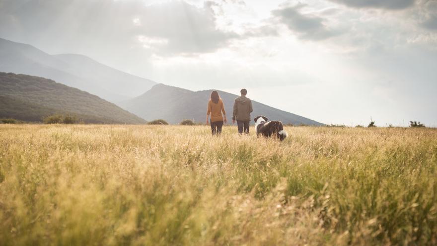 La temática del concurso en esta edición es el futuro del mundo rural