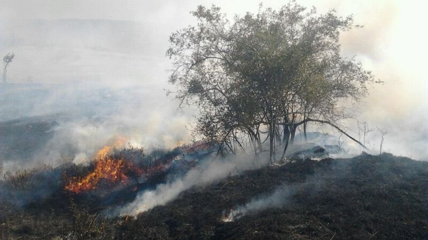 Siguen activos los incendios de Estacas y Pandillo, pero ya están controlados