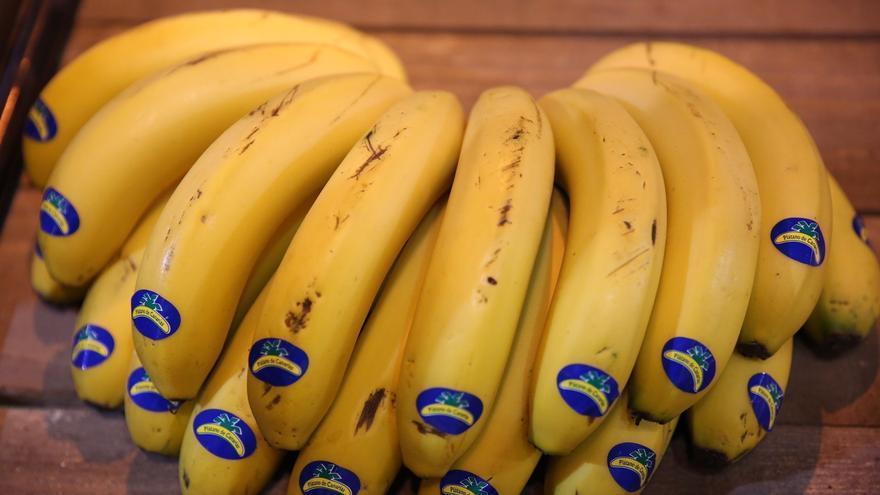 Plátanos de Canarias (Europa Press).