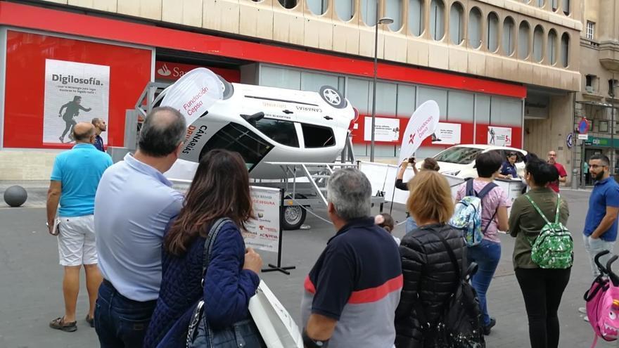 Imagen de la actividad desarrollada en la plaza de la Candelaria este domingo