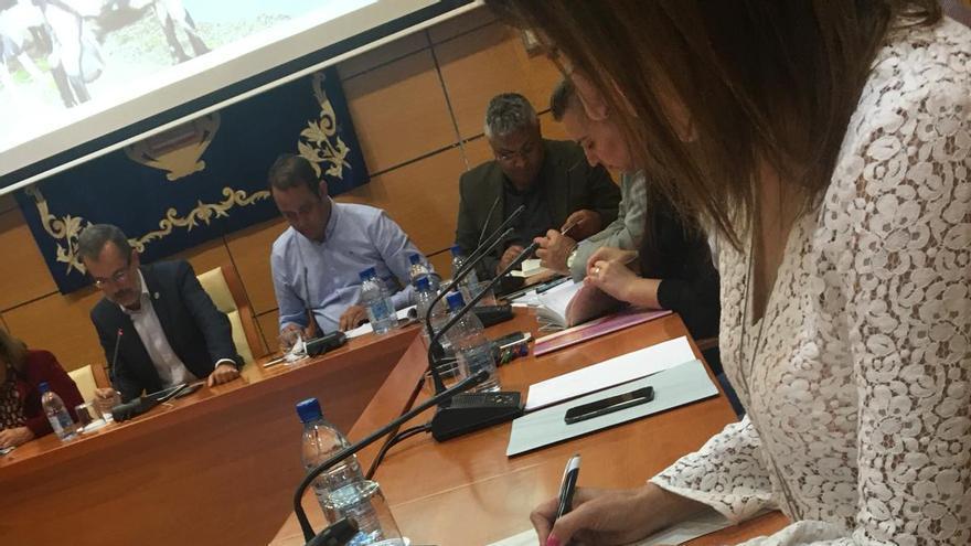 La expresidenta del PP de Fuerteventura, Águeda Montelongo, aprovecha el pleno del Cabildo para preparar sus oposiciones a profesora de instituto.