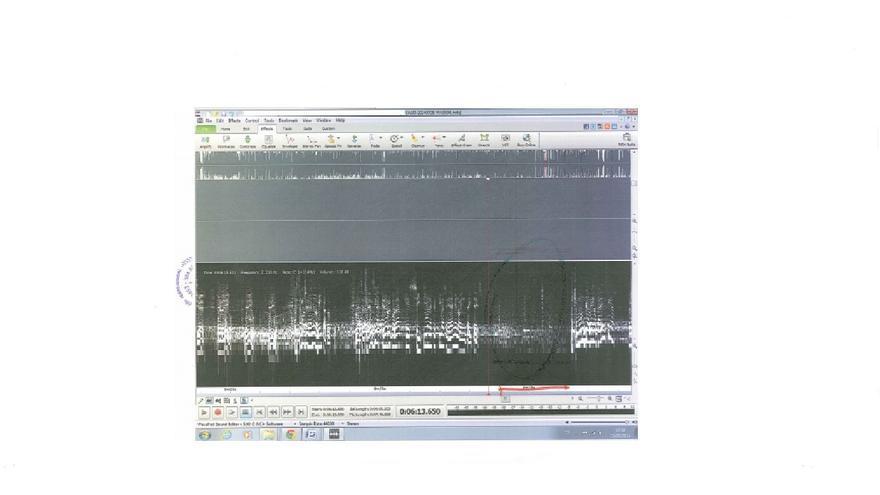 Corte audio manipulado Malagón