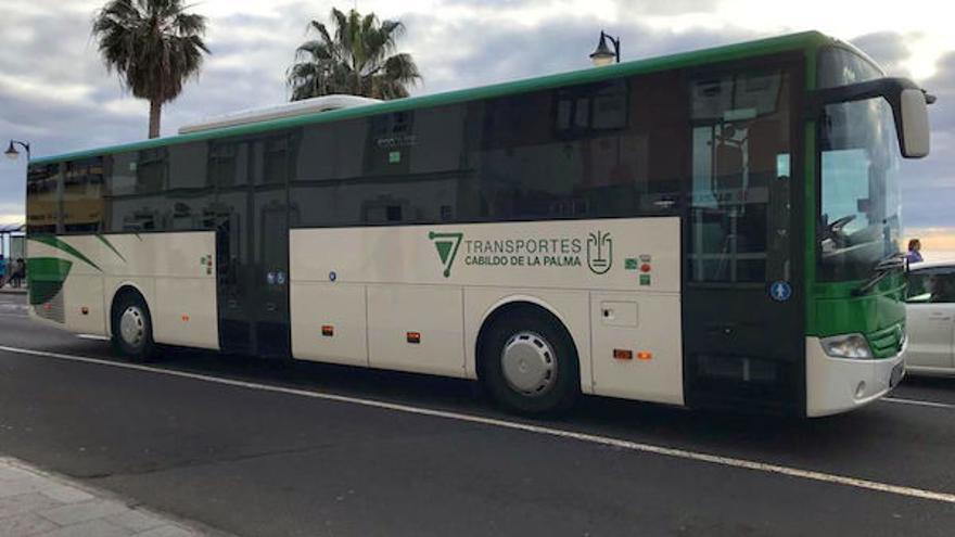 Nuevas guaguas del transporte público.