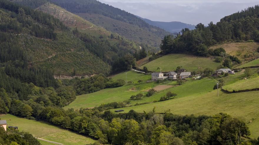 Paisajes verdes de Los Oscos. Los prados verdes se alternan con las manchas de bosque y los pueblos tradicionales. Viajar Ahora