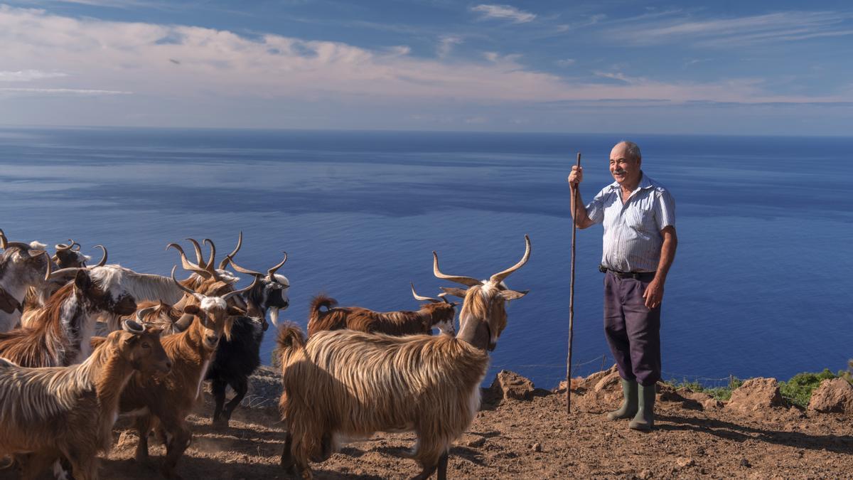 Máximo Rodríguez es el criador más antiguo de la Asociación de Criadores de Cabras Palmeras.